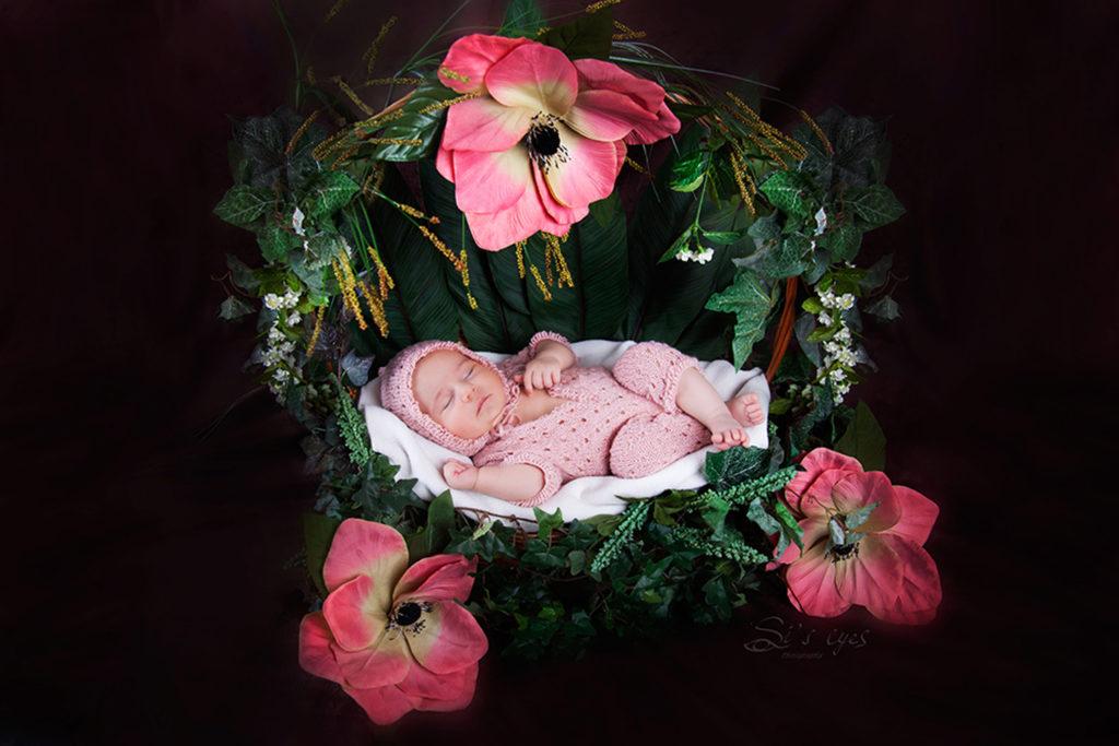 Blumenkorb Neugeborenen Babyfotograf